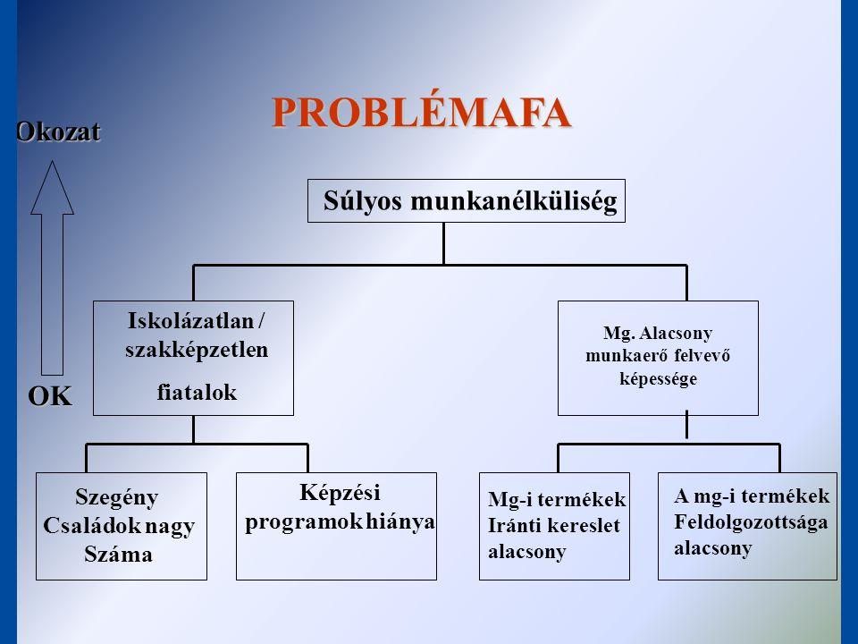 PROBLÉMAFA Okozat Súlyos munkanélküliség OK
