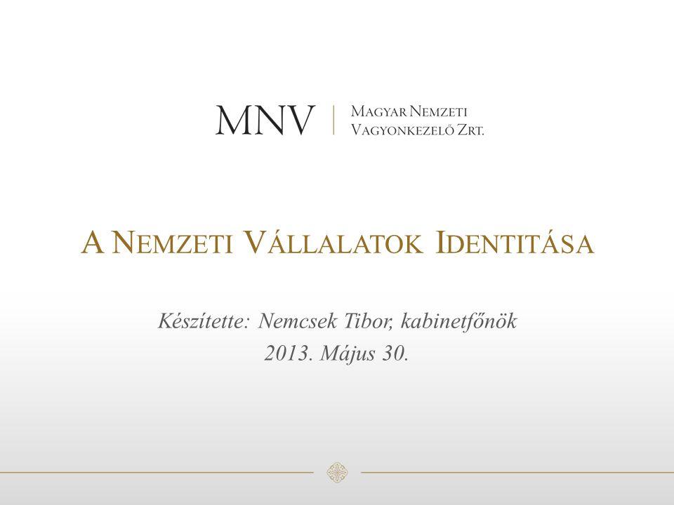 A Nemzeti Vállalatok Identitása