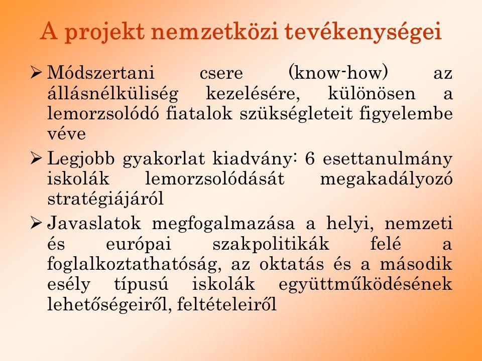 A projekt nemzetközi tevékenységei