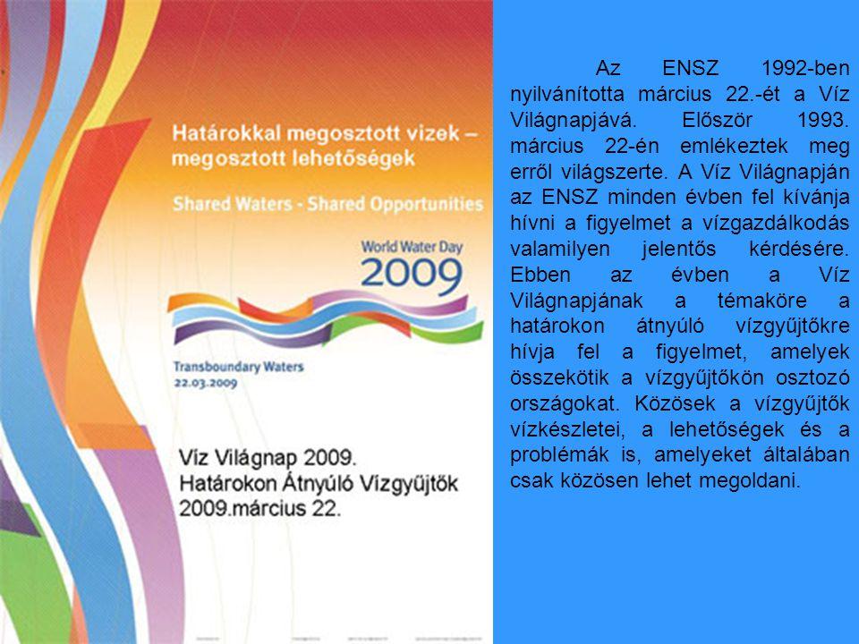 Az ENSZ 1992-ben nyilvánította március 22. -ét a Víz Világnapjává