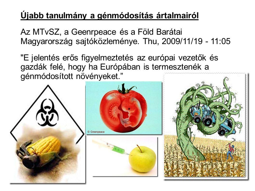 Újabb tanulmány a génmódosítás ártalmairól