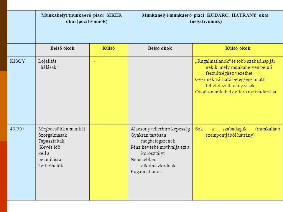 Munkahelyi/munkaerő-piaci SIKER okai (pozitívumok)