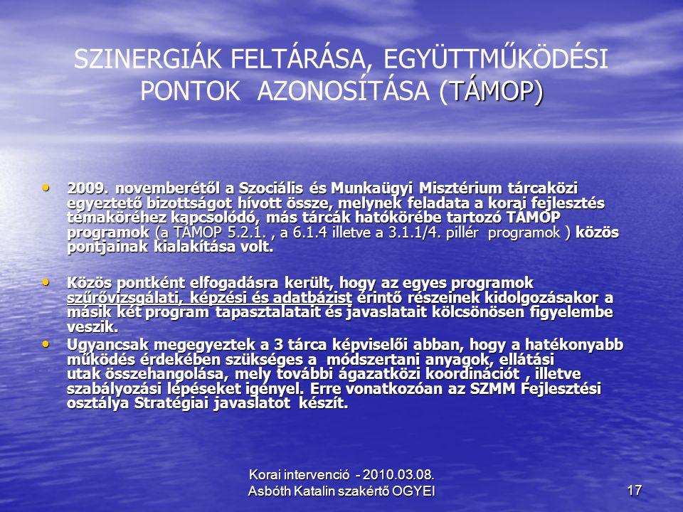 SZINERGIÁK FELTÁRÁSA, EGYÜTTMŰKÖDÉSI PONTOK AZONOSÍTÁSA (TÁMOP)