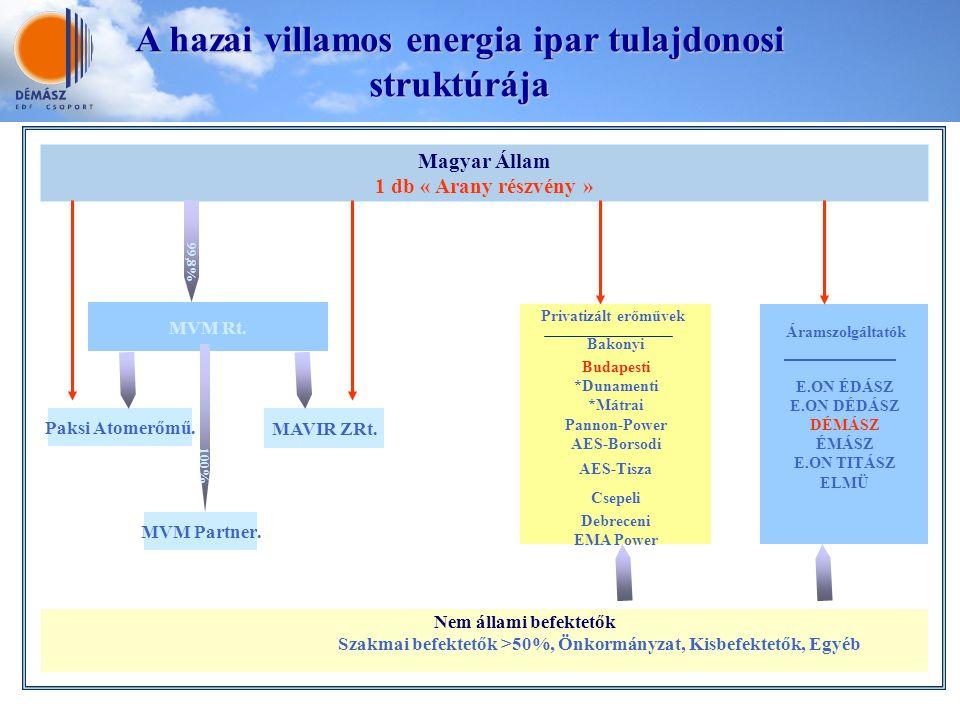 A hazai villamos energia ipar tulajdonosi struktúrája