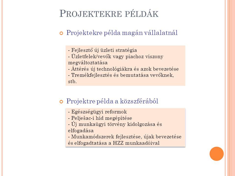 Projektekre példák Projektekre példa magán vállalatnál