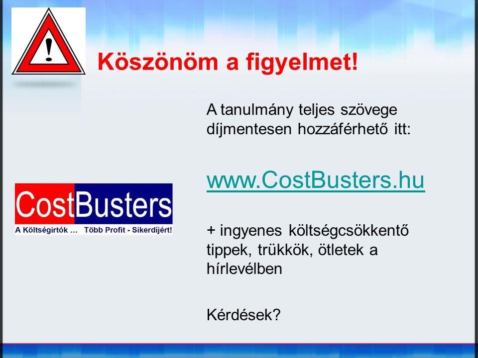 Köszönöm a figyelmet! www.CostBusters.hu