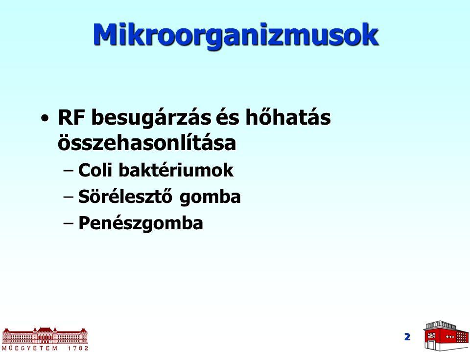 Mikroorganizmusok RF besugárzás és hőhatás összehasonlítása