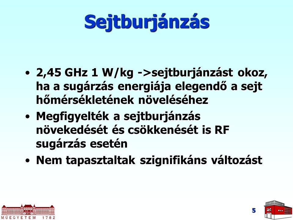 Sejtburjánzás 2,45 GHz 1 W/kg ->sejtburjánzást okoz, ha a sugárzás energiája elegendő a sejt hőmérsékletének növeléséhez.