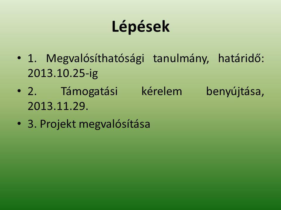 Lépések 1. Megvalósíthatósági tanulmány, határidő: 2013.10.25-ig