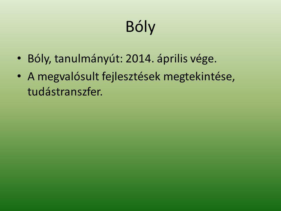 Bóly Bóly, tanulmányút: 2014. április vége.