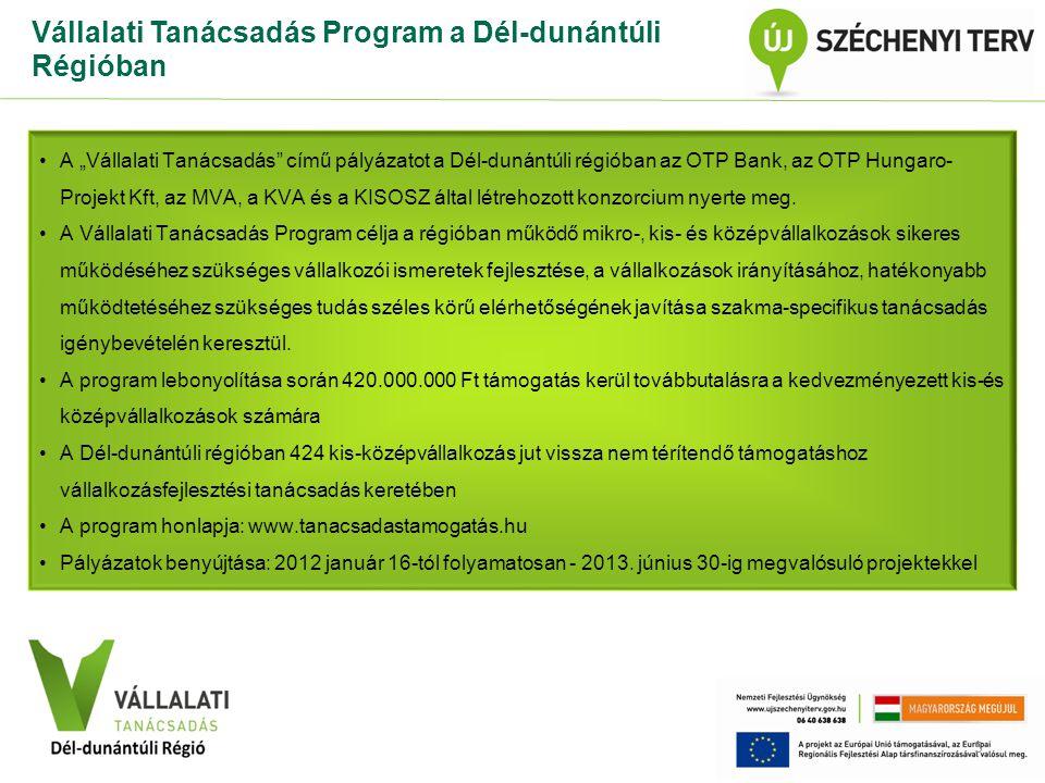Vállalati Tanácsadás Program a Dél-dunántúli Régióban