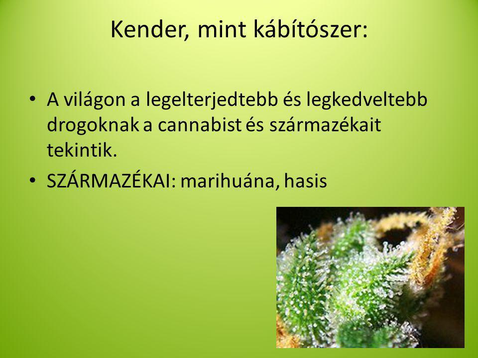 Kender, mint kábítószer: