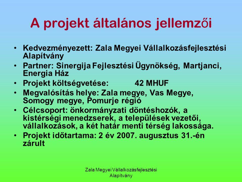 A projekt általános jellemzői