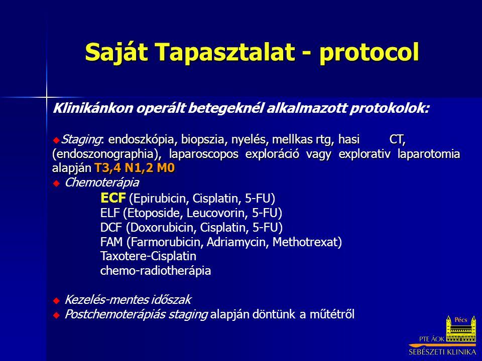 Saját Tapasztalat - protocol