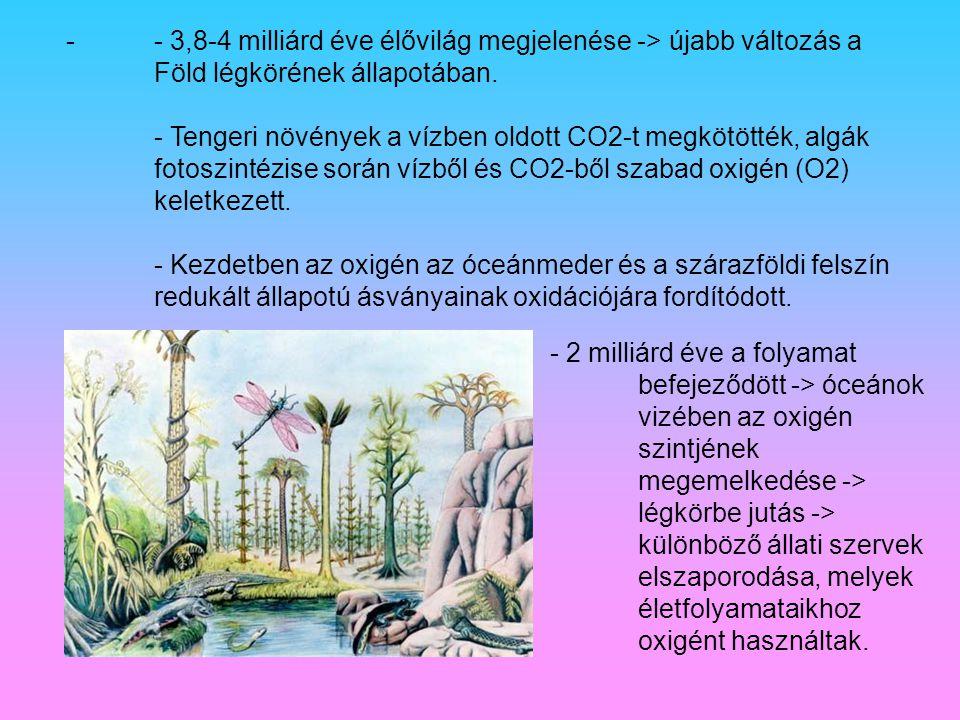 - 3,8-4 milliárd éve élővilág megjelenése -> újabb változás a Föld légkörének állapotában. - Tengeri növények a vízben oldott CO2-t megkötötték, algák fotoszintézise során vízből és CO2-ből szabad oxigén (O2) keletkezett. - Kezdetben az oxigén az óceánmeder és a szárazföldi felszín redukált állapotú ásványainak oxidációjára fordítódott.
