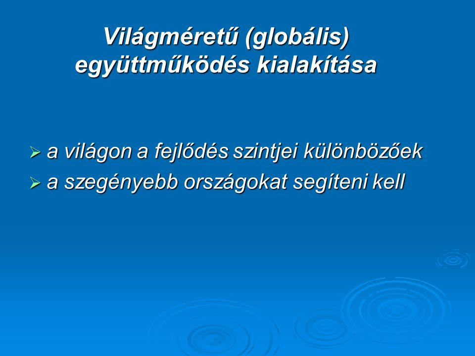 Világméretű (globális) együttműködés kialakítása