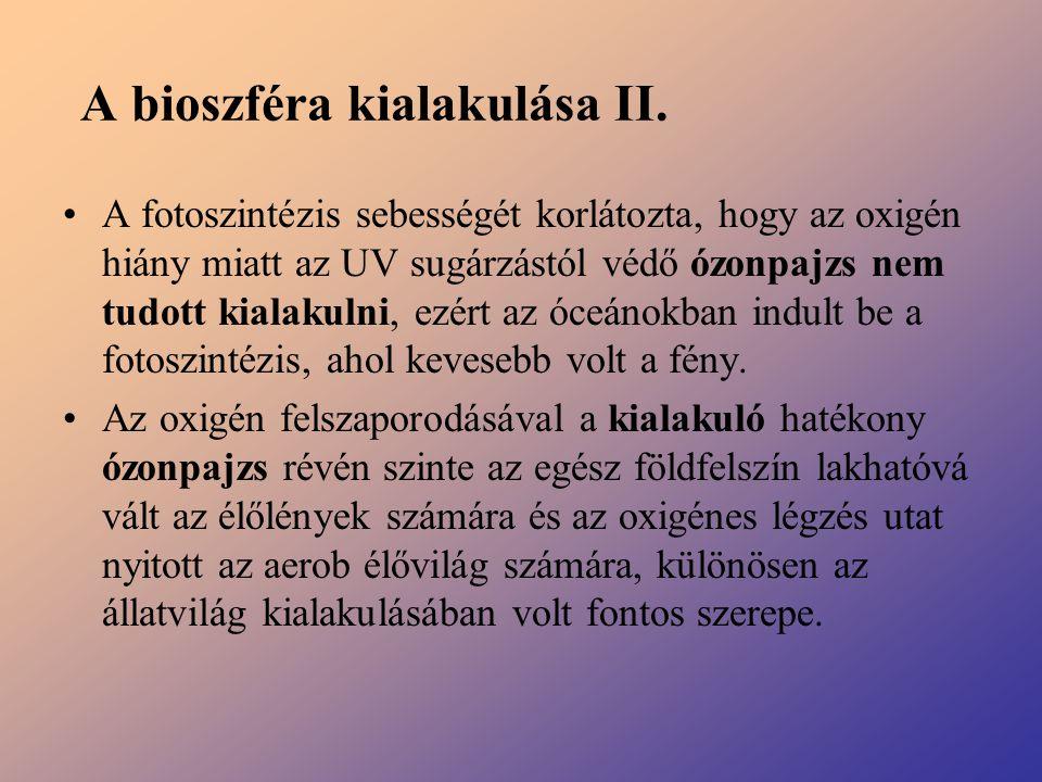 A bioszféra kialakulása II.