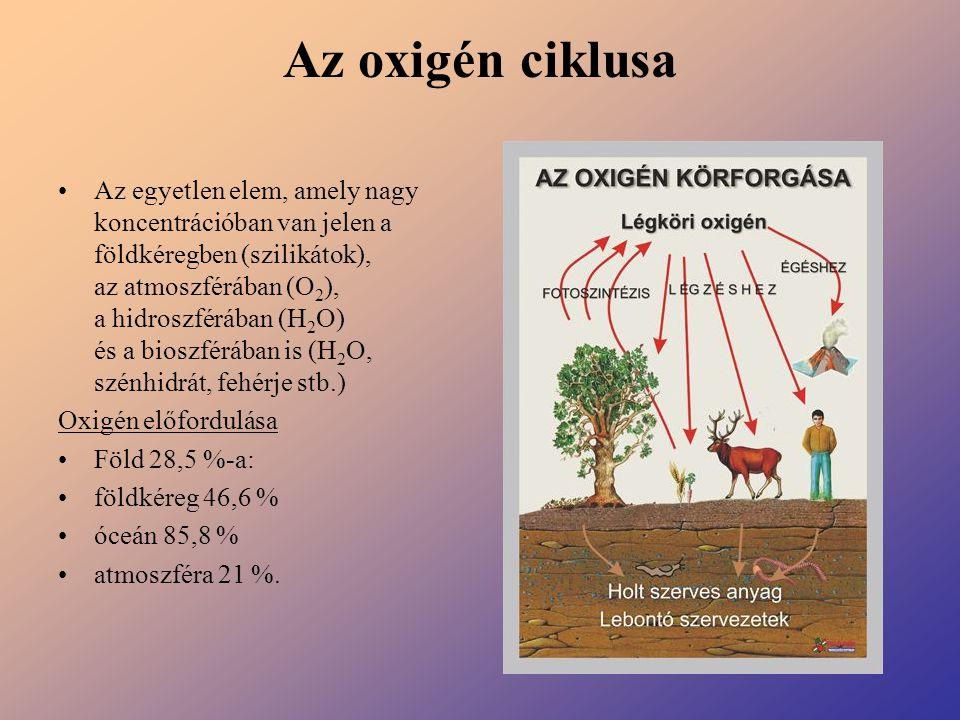 Az oxigén ciklusa