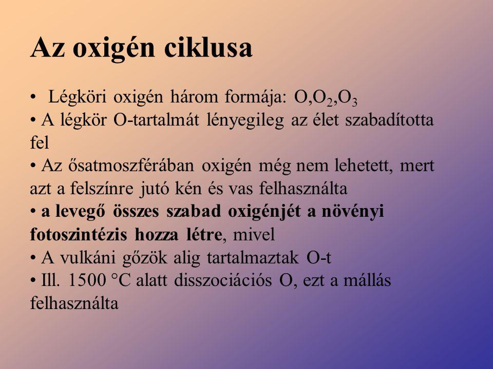 Az oxigén ciklusa Légköri oxigén három formája: O,O2,O3