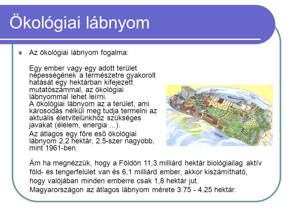 Ökológiai lábnyom Az ökológiai lábnyom fogalma: