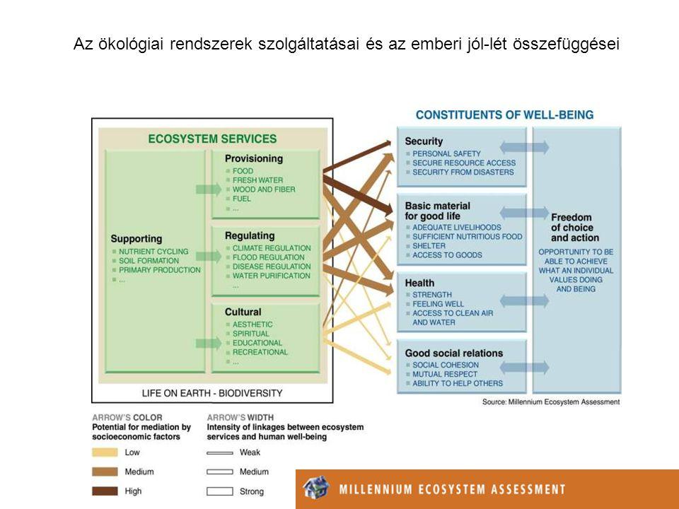 Az ökológiai rendszerek szolgáltatásai és az emberi jól-lét összefüggései