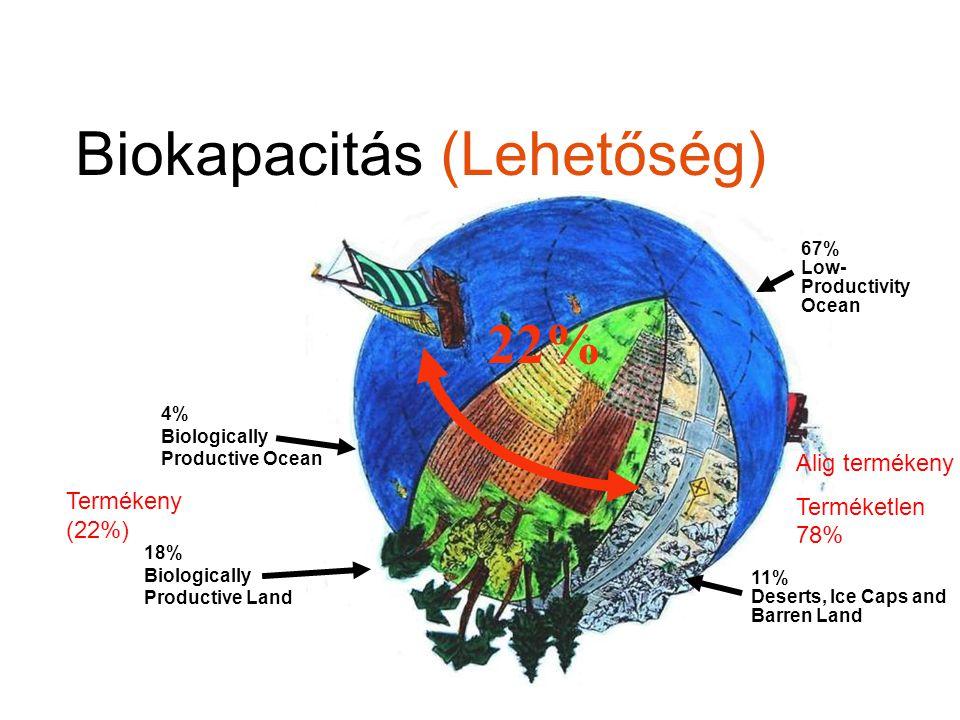 Biokapacitás (Lehetőség)