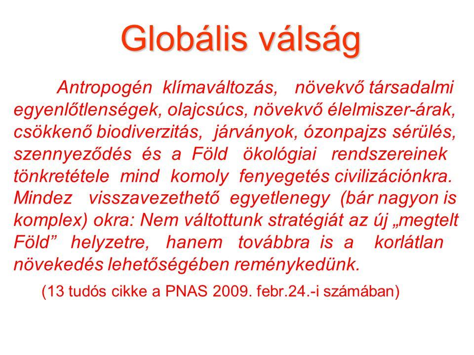 Globális válság