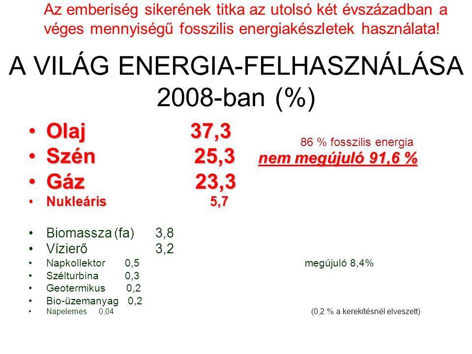 A VILÁG ENERGIA-FELHASZNÁLÁSA 2008-ban (%)