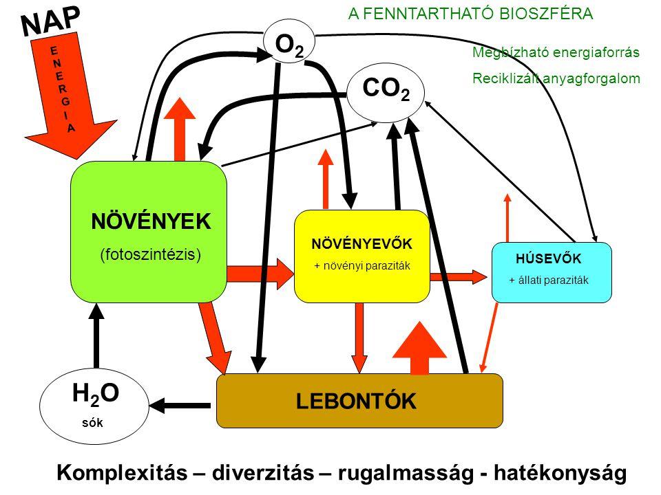 NAP A FENNTARTHATÓ BIOSZFÉRA. O2. ENERGIA. Megbízható energiaforrás. Reciklizált anyagforgalom.