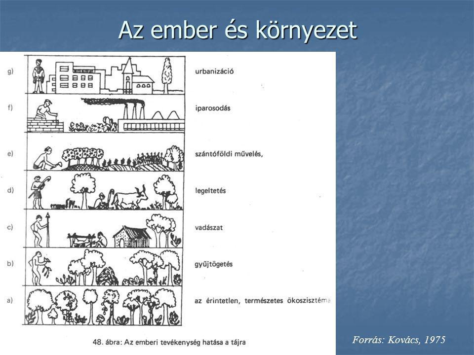 Az ember és környezet Forrás: Kovács, 1975