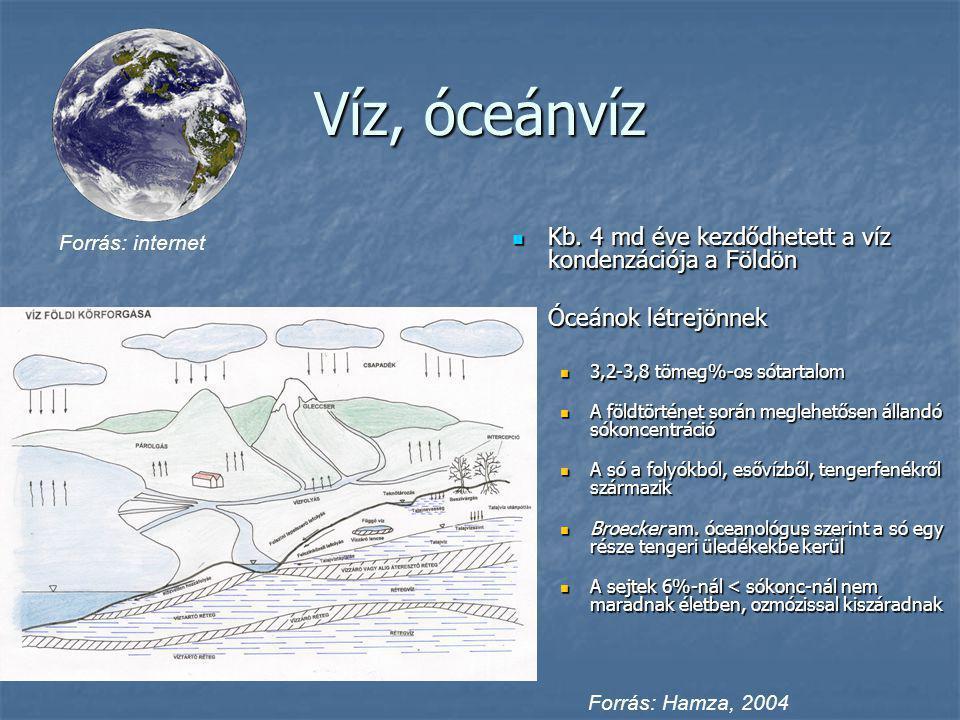 Víz, óceánvíz Kb. 4 md éve kezdődhetett a víz kondenzációja a Földön