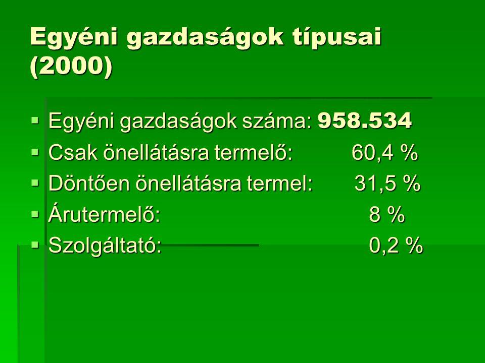 Egyéni gazdaságok típusai (2000)