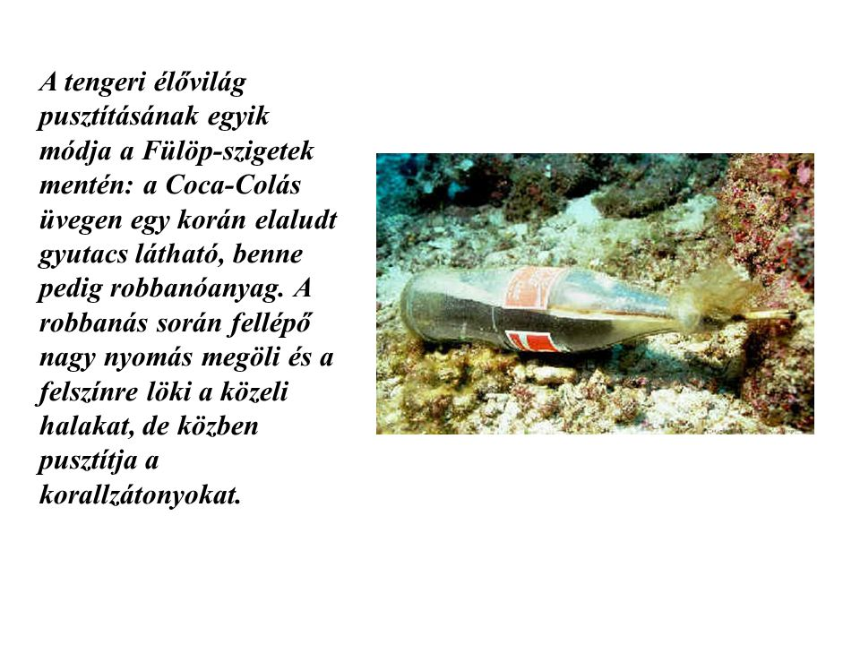 A tengeri élővilág pusztításának egyik módja a Fülöp-szigetek mentén: a Coca-Colás üvegen egy korán elaludt gyutacs látható, benne pedig robbanóanyag.