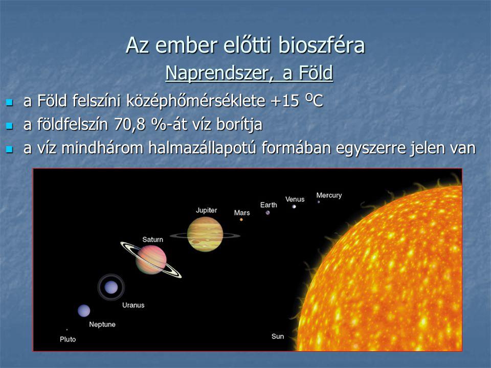 Az ember előtti bioszféra Naprendszer, a Föld