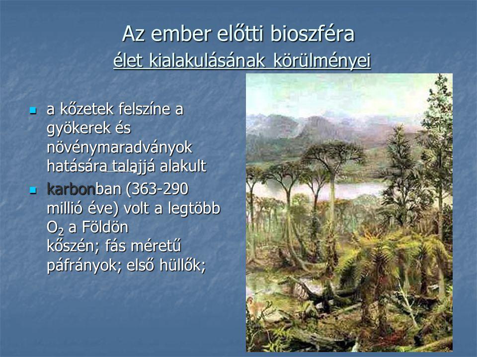 Az ember előtti bioszféra élet kialakulásának körülményei