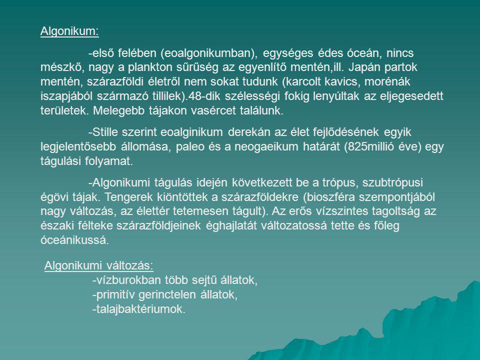 Algonikum: