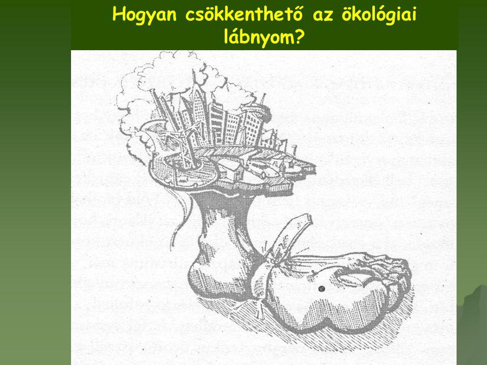 Hogyan csökkenthető az ökológiai lábnyom