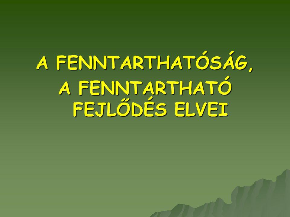 A FENNTARTHATÓ FEJLŐDÉS ELVEI