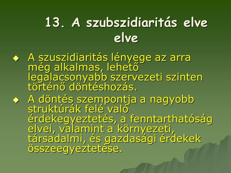 13. A szubszidiaritás elve elve