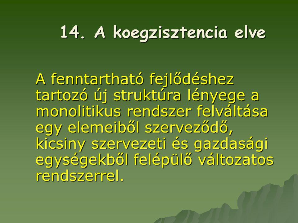 14. A koegzisztencia elve