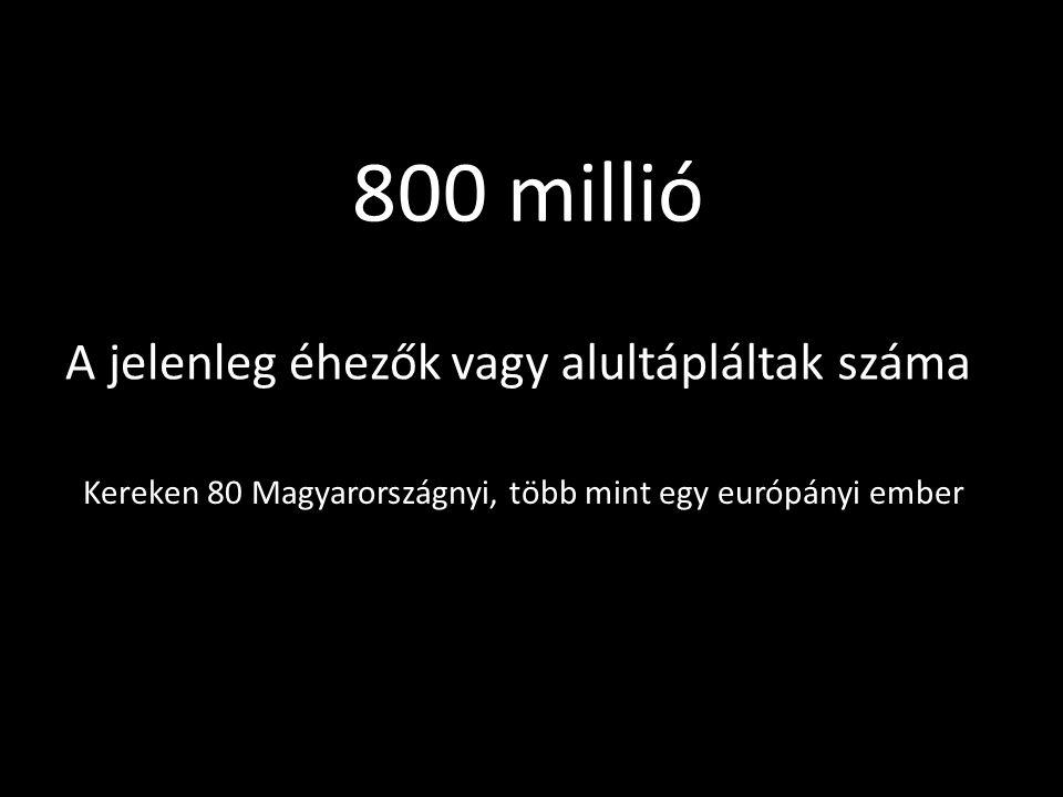 Kereken 80 Magyarországnyi, több mint egy európányi ember