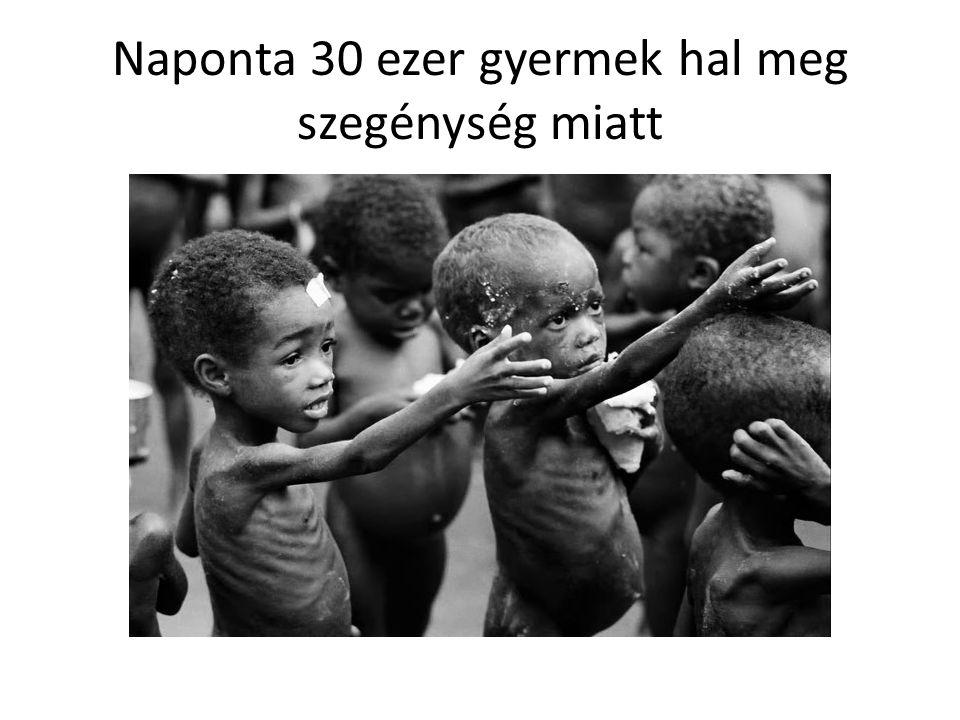 Naponta 30 ezer gyermek hal meg szegénység miatt