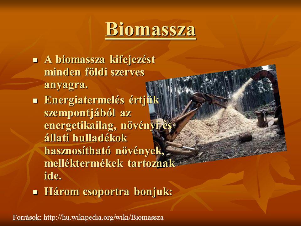 Biomassza A biomassza kifejezést minden földi szerves anyagra.