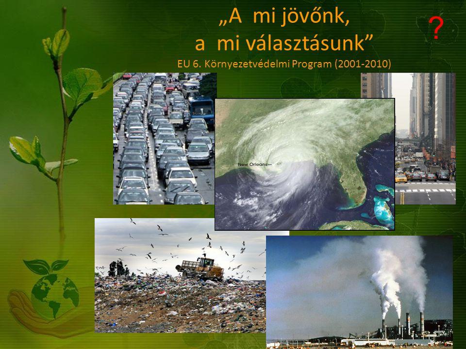 """""""A mi jövőnk, a mi választásunk EU 6. Környezetvédelmi Program (2001-2010)"""
