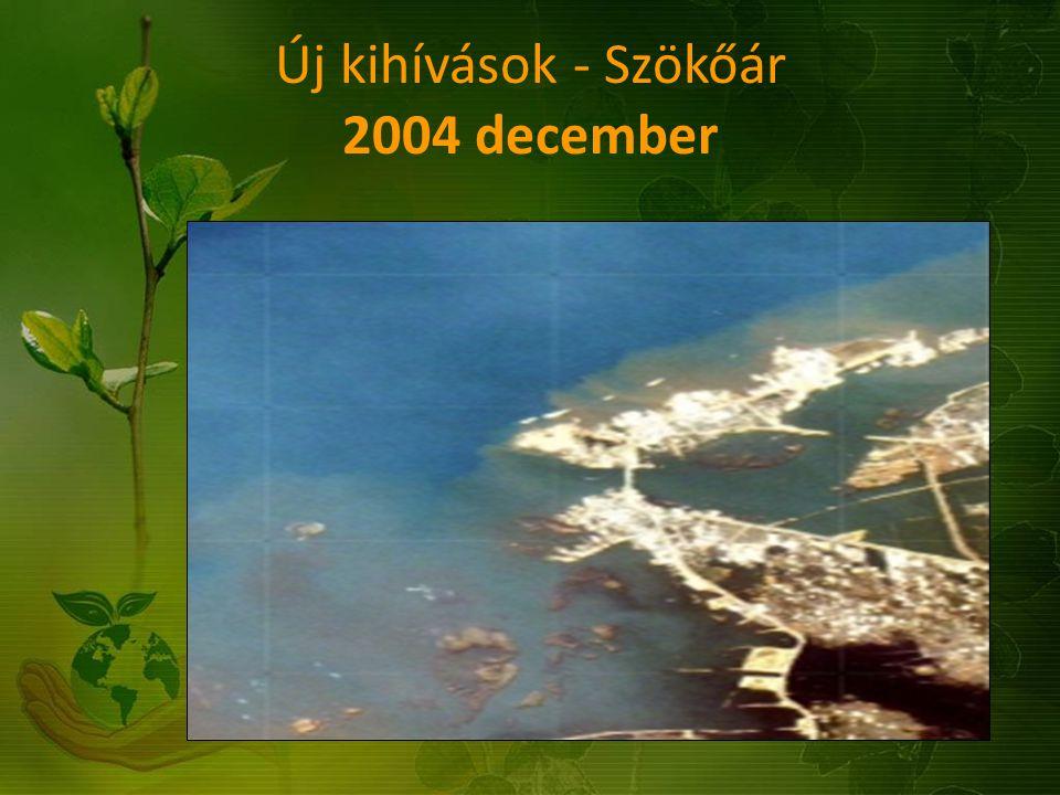 Új kihívások - Szökőár 2004 december