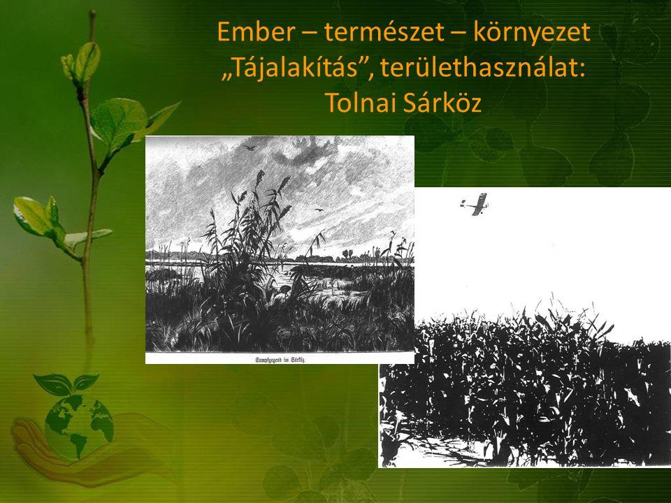 """Ember – természet – környezet """"Tájalakítás , területhasználat: Tolnai Sárköz"""