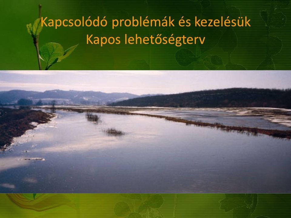 Kapcsolódó problémák és kezelésük Kapos lehetőségterv