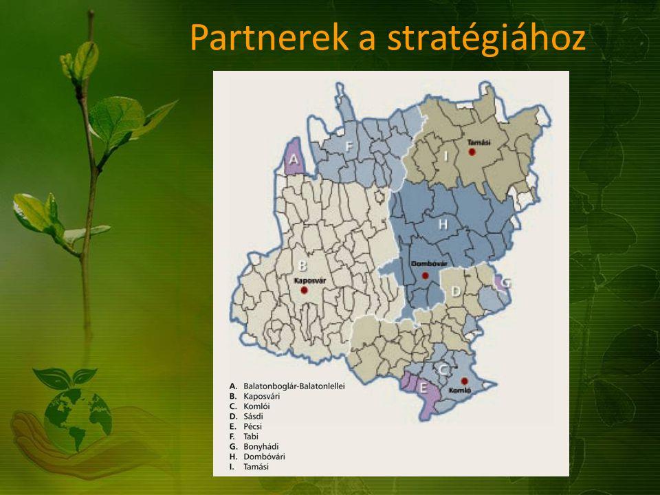 Partnerek a stratégiához