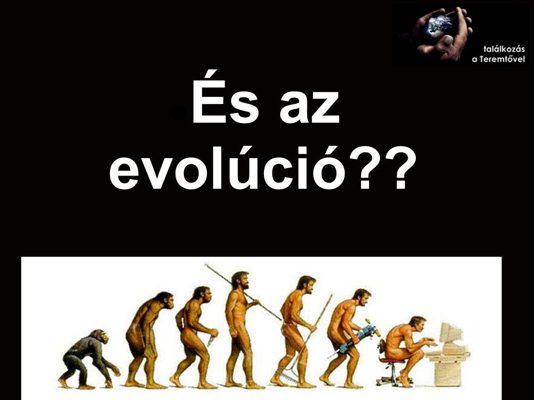 És az evolúció