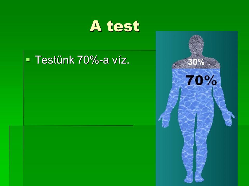 A test Testünk 70%-a víz.